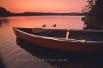 Photo: Algonquin Provincial Park Sunset