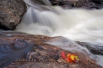 Photo: Autumn Waterfall Lake Superior Provincial Park