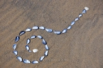 A day spent at the beach in the sandy shores along the Pinware River Mouth in Southern Labrador, Canada creating a mussel shell art design.