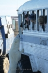 Who is more curious? Polar Bear or the people enjoying  a polar bear watching tour in Churchill, Manitoba.