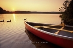 Algonquin Provincial Park is a great canoeing place in Ontario, Canada