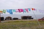 An easy way to dry your laundry is to hang it out on a clothesline, especially in the town of Bonavista as it sits along the coastal shores of Newfoundland where the wind blows.