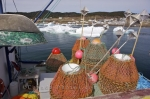 A commercial fishing boat patiently waiting for the pack ice in Conche Harbour in Newfoundland, Canada to melt so that they can fill their crab pots with fresh crab.