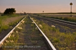 Photo: CP Railway Line Morse Saskatchewan Canada