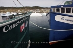 Two commercial crab fishing boats dock along the wharf in Conche Harbour in Newfoundland, Canada until the pack ice disappears.