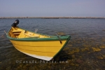 Photo: Dory Boat Grand Manan Island New Brunswick