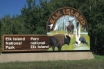 Photo: Elk Island National Park Alberta