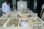 Photo: Fish Market Toronto