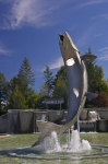 With its mouth wide open this Atlantic Salmon fish monument symbolizes Campbellton, New Brunswick as being the capital of the salmon country.