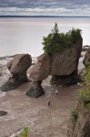 Photo: Flowerpot Hopewell Rocks Bay Of Fundy