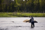 Photo: Fly Fishing Main Brook Newfoundland