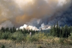 A forest fire burns out of control in Kluane National Park in the Yukon Territory in Canada.