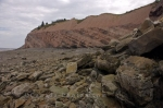 Photo: Fossil Cliffs Joggins Nova Scotia
