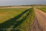 Along this dirt road, is an Ecotour Route through the Frenchman River Valley which is in the West Block of Grasslands National Park.