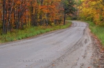 Photo: Gravel Forest Road Algonquin Provincial Park