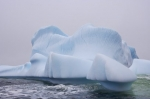 Photo: Great Caribou Island Grounded Iceberg Southern Labrador