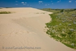 Photo: Great Sand Hills Sand Dunes Saskatchewan