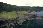 Photo: Green Gardens Newfoundland