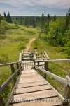 Along the hiking trail in the Spirit Sands in Spruce Woods Provincial Park in Manitoba, Canada, a long set of wooden stairs takes hikers to the next leg of the journey.