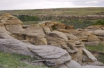 A close up picture of the unique sandstone formations on the Hoodoo Trails in Writing on Stone Provincial Park in Southern Alberta.