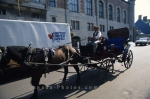 A fine way to travel through Quebec City in Canada is by a horse buggy.