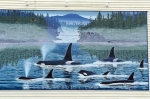 Killer Whales on a mural in Chemainus on Vancouver Island in British Columbia in Canada.