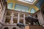 Amongst the beautiful architecture on the interior of the Legislative Building in the City of Winnipeg, Manitoba stands two life sized statues of bison.