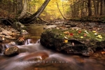 Photo: MacIntosh Brook Nova Scotia
