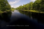Photo: Mersey River Scenery Kejimkujik National Park