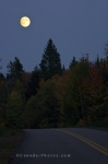 The glow from the full moon that hangs above the tree line in La Mauricie National Park in Quebec, Canada enlightens the Autumn trees.