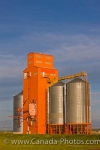 The grain industry is becoming more efficient as businesses are converting to modernized grain elevators as the ones shown here in the town of Morse, Saskatchewan in Canada.