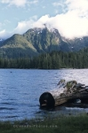 Picture of the pristine Mosquito Lake on the Queen Charlotte Islands, Moresby Island, British Columbia.