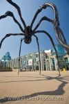In 2005, the giant bronze spider, Maman, created by Louise Bourgeois, was installed outside the National Gallery of Canada in the city of Ottawa, Ontario.