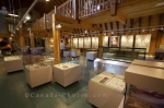 Photo: Exhibits Newfoundland Insectarium Butterfly Pavilion