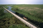The Marsh Boardwalk in Point Pelee National Park in Ontario, Canada meanders across the marshlands.