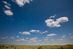 Photo: Prairie Landscape Summer Day Sceptre Saskatchewan