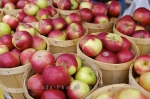 Photo: Red Apples Picture