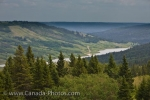 Photo: Reesor Lake Viewpoint Cypress Hills Interprovincial Park Alberta