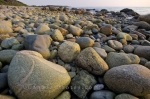 Photo: Rocky Shore Green Point Newfoundland