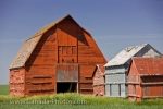 Photo: Rustic Farm Barns Southern Saskatchewan Prairie Land