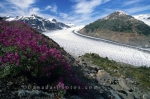 Photo: Salmon Glacier British Columbia