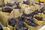 Bags of seafood known as Fresh Dulse which is a sea vegetable on display at a market stall in downtown Saint John in New Brunswick, Canada.