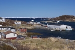 Fishing stages and resident homes decorate the harbour of St. Julien's on the Great Northern Peninsula in Newfoundland, Canada.