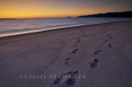 Photo: Sunset Beach Footprints Lake Superior Ontario