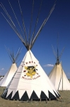 Teepees showing lifestyle of American natives at a Pow Wow in Alberta, Canada.
