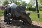 A dinosaur known as the Triceratops is one of the many sculptures found in Odette Sculpture Park in Windosr, Ontario in Canada.