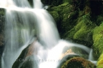 Photo: Waterfall Pictures Banff National Park