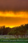 Photo: Yellow Sunset Sky With Storm Clouds Winnipeg City Manitoba