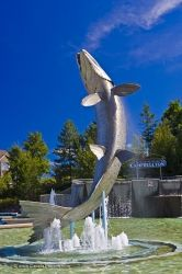 Atlantic Salmon Statue Restigouche River New Brunswick