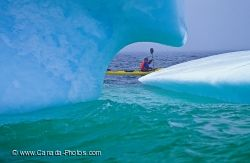 Blue Iceberg Kayaking Adventure